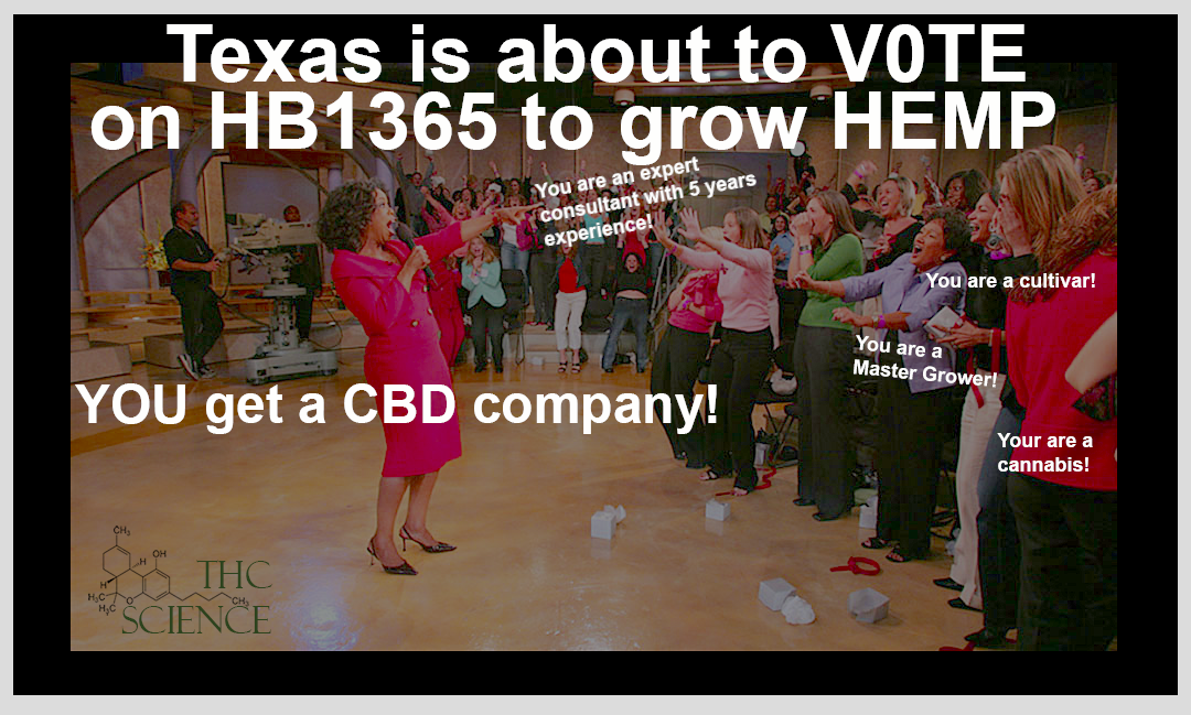 Texas HB 1365 Hemp Bill Vote Meme