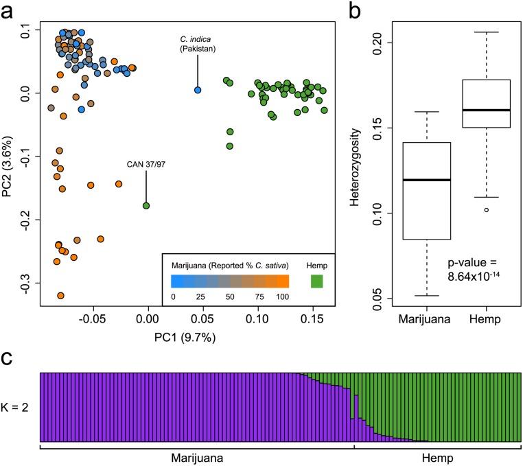 genetic mapping hemp vs cannabis